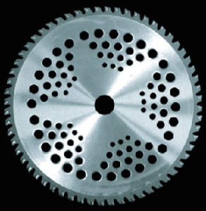 """Tct Saw Blade for Grass Cg005 10""""X40tx25.4/20 pictures & photos"""
