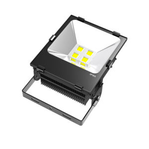 200W Fin LED Floodlight with 7years Warranty Meanwell Driver pictures & photos