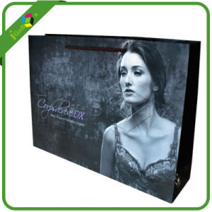 Custom Printed Paper Shopping Bags for Packaging pictures & photos