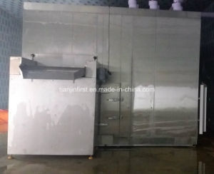 Fluidized Quick Freezing/Fluidization Individually Quick Freezer pictures & photos