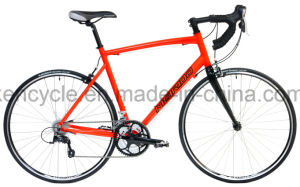 700c 24 Speed Road Bicycle /Versatile Road Bike for Adult Bike &Student/Cyclocross Bike/Road Racing Bike/Lifestyle Bike/Commuter Bicycle/Specialized Road Bike pictures & photos