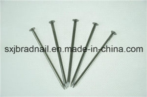Common Round Wire Nails (factory/supplier) pictures & photos