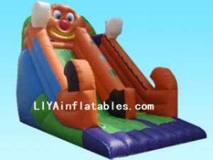 Inflatable Slide Bouncer (LY07239)