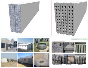 Lightweight Wall Panel for Building Industry pictures & photos
