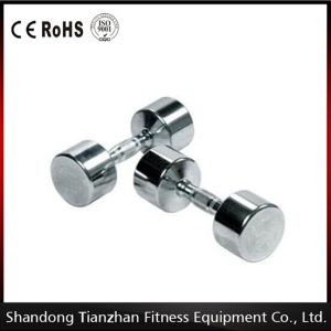 Gym Accessories Chrome Steel Dumbbell Tz-8003 pictures & photos