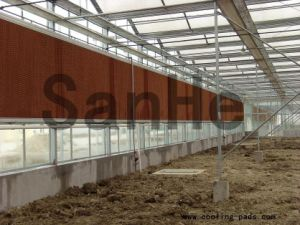Greenhouses Ventilation High Quality Cooling Pad pictures & photos