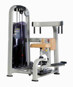 Fitness Equipment, Gym Equipment Rotary Torso (AF-7811)