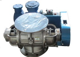 High Quality and Durable Granular Rotary Valve Feeder pictures & photos