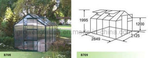 Hobby Greenhouse for Plants and Flowers (B709) pictures & photos