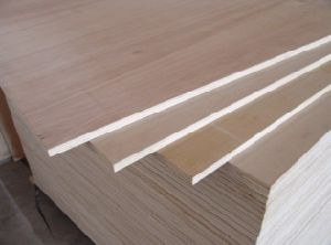 Furniture Grade Poplar Birch Pine Mahogany Okoume Plywood pictures & photos