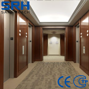 Srh Machine Roomless Passenger Elevator for Sale pictures & photos