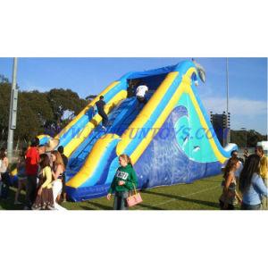 Inflatable Water Slide / Inflatable Slide / Bouncer Slide
