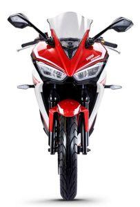 China Superbike 250cc, 300cc, Similar YAMAHA R1, Kawasaki Ninjia 250 pictures & photos
