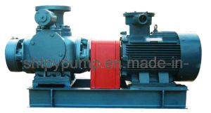 Double Screw Pump (2W. W) pictures & photos
