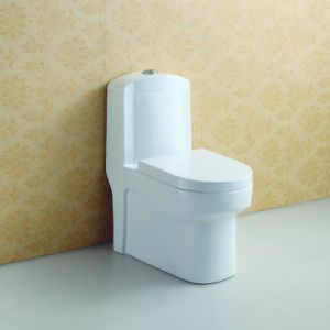 Floor Mounted Soft Closing One Piece Toilet at-581