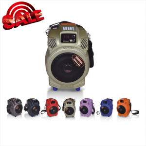 Hot Sale Speaker Loudspeaker with USB/SD Card (Q6F) pictures & photos