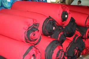 All Kinds of Fabric Neoprene SBR pictures & photos