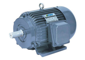 Y Series Three Phase Induction Motors