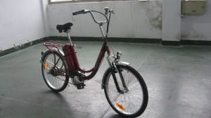 Steel Frame Cheap Electric Bicycle pictures & photos