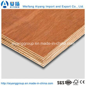 9mm/17mm Bintangor/Okoume Plywood for Furniture/Decoration pictures & photos