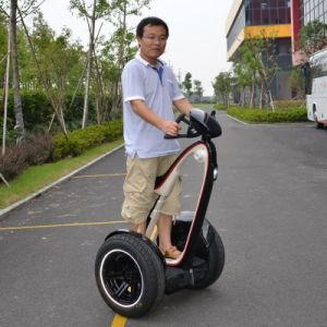 Freeyoyo Two Wheel Self-Balancing Human Transporter G3 pictures & photos