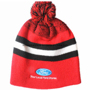 China Factory Produce Custom Design Acrylic Ski Jacquard Beanie Hat pictures & photos