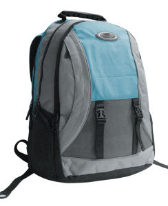 Leisure Laptop Backpack Hiking Sports Bag pictures & photos