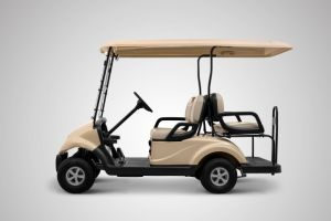 2+2 Seater Electric Golf Cart Made by Dongfeng pictures & photos