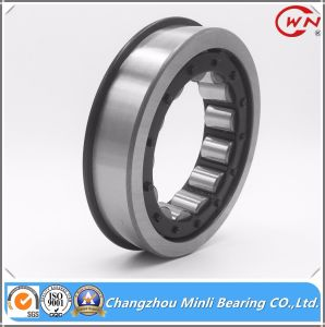 Cylindrical Roller Bearings with Snap Ring Grooves pictures & photos