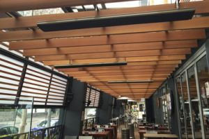 Electric Infrared Patio Heating System pictures & photos