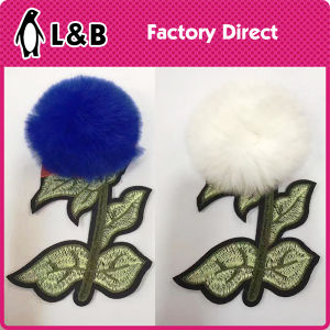Emberoidered Heat 3D Applique with Feather pictures & photos