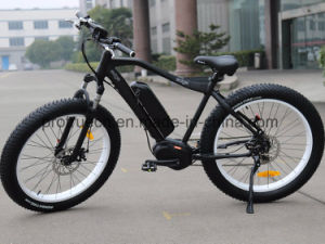 250W 8 Fun Motor Electric Bicycle for Mountain Touring pictures & photos