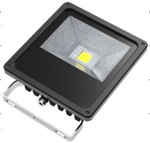 LED COB Floodlight, 10W COB Floodlight, Outdoor Lighting pictures & photos
