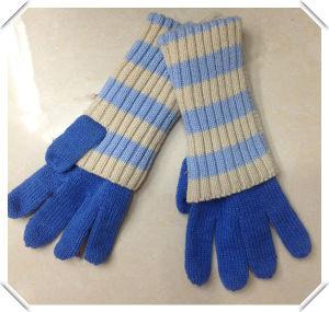 Warm Fashion Knitted Gloves - Wf047