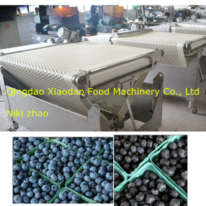Fruit Sorting Machine/Blueberry Classifies Machine/Cherry Sorting Machine pictures & photos
