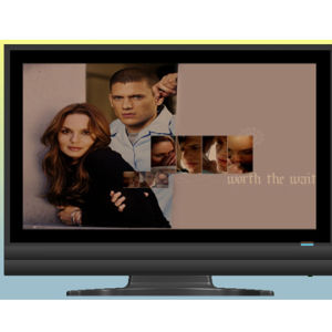 "21.6"" LCD TV with DVD (LCD1989-5)"