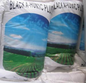 Biological Organic NPK Granular Fertilizer pictures & photos