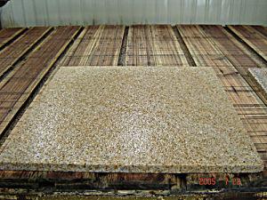Paving Stone (Water jet Surface)