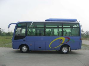 Mini Bus (17-29 Seats)