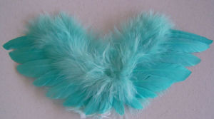 Feather Angel Wing-Small (C10-24*10)