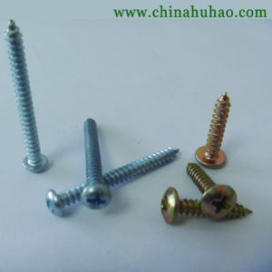 Screw/Professional Pruduction DIN Standard Pan Head Self Tapping Screw pictures & photos