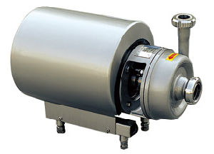 Self-Priming Sanitary Stainless Steel Pump (IFEC-LXB100002) pictures & photos