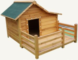 Dog House (PCDH-6076)