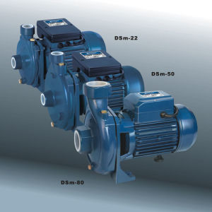 Water Pumps, Centrufugal Pump with CE UL (DSM SERIES) pictures & photos