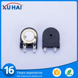 17 Years Pefessionally Manufacture at Induction Cooker Buzzer