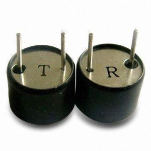 Ultrasoinc Sensor (DPU1640BOH12T/R)