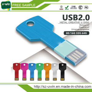 Free Samples 8GB USB Flash Drive Key Shape pictures & photos
