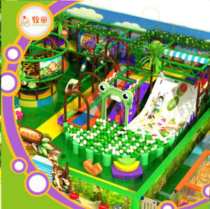Jungle Indoor Playground for Kids Playhouse pictures & photos