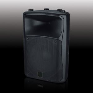 Stage Speaker Box PS-1715 pictures & photos