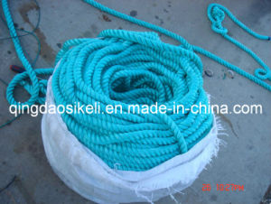 PE Braided Rope pictures & photos